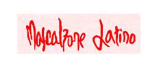 MASCALZONE logo