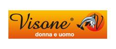 VISONE logo